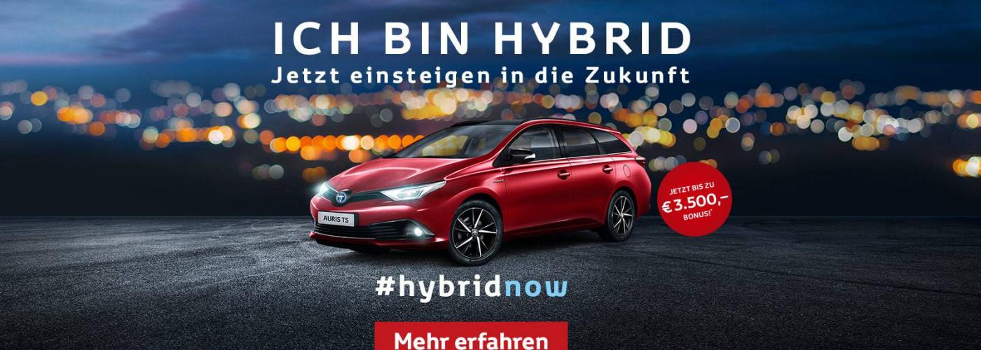 Auris Hybrid Aktion