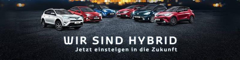 Wir sind Hybrid